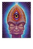 Postcard Pschedelic Art - Alex Grey - Size 15x10 Cm. Aprox. Unused - Pintura & Cuadros