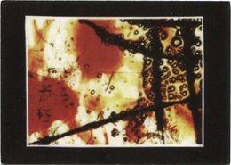 LORENA CELEZNOFF ARTE MODERNO ABSTRACTO POSTAL PUBLICIDAD ARGENTINA CIRCA 2000's NON CIRCULE -LILHU - Pintura & Cuadros