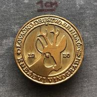 Badge Pin ZN008599 - Hunting Croatia Serbia Srpska Krajina Baranja Lovacko Drustvo Srndac Knezevi Vinogradi - Badges