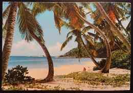 SEYCHELLES - Anse Intendance - Palmes - Vg - Seychelles