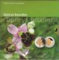 """Luxembourg 2012 : 5€ En Argent Et Or Nordique """"Ophrys Bourdon"""" - Luxemburgo"""