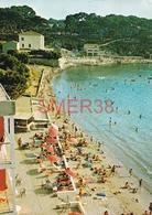 """83 - Sanary - La Plage De La Gorguette - L'hotel """"les Pieds Dans L'eau"""" - Sanary-sur-Mer"""