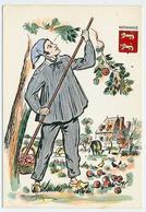CPSM 10.5 X 15 Costume Folklorique NORMANDIE Homme Illustrateur Margotton - Illustrators & Photographers