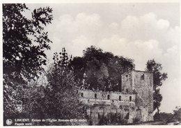 LINCENT - Ruines De L'Eglise Romane (XIIe Siècle) - Façade Nord - Lincent