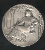 Médaille Trompette De La Renommée - Bronze Argenté - Non Attribuée - Professionali / Di Società