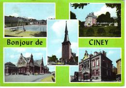 Belgique Namur Ciney 5 Vues Piscine Plongeoir Gare Eglise VW Käfer VOIR BEAU TIMBRE Ostende 1267-1967 - Ciney