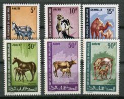 MAURITANIE ( POSTE ) : Y&T  N°  256/261  TIMBRES  NEUFS  SANS  TRACE  DE  CHARNIERE . - Mauritania (1960-...)