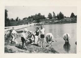 Snapshot Animée Morlaix Plage Vaches Maillots De Bain Swimming Suit Bretagne - Anonyme Personen