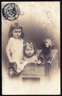 SUPERBE CARTE PHOTO ALLEMANDE MONTEE 1900 - JOLIE FILLETTE AVEC SOEUR ET CHIEN TECKEL ? - - Abbildungen