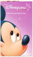 FRANCE - FRANKREICH - FRANCIA DISNEYLAND PARIS PASSPORT - DISNEY MICKEY MOUSE - PERFECT - Toegangsticket Disney
