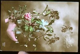 HOUX - Flores, Plantas & Arboles