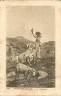 LA PECORAIA - TIMBRO DI POSTA MILITARE - FORMATO PICCOLO - VIAGGIATA 1915 - (rif. N167) - Viehzucht