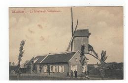 Walem  Waelhem - Le Moulin De Battenbroeck - Malines
