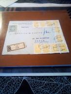 2 Lettres Recommandees  Vienne Pour La France Bel Aff TB - Lettres & Documents