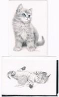 2 Cartes Chat  - Cat -katze-  Poes -gatto - Katten