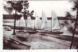 CPM/CPSM - L'Escouette - Lac De LACANAU-ville - Voiliers - Autres Communes