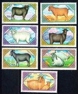 Mongolie Mongolia 1658/64 Caprins , Bouc , Chèvre , Laine  , Mouton - Stamps