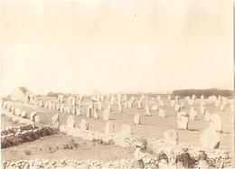 Dépt 56 - CARNAC - Photo 8 X 11 Cm - Alignements Du Ménec (menhirs) - Photographie, 1904 - Carnac