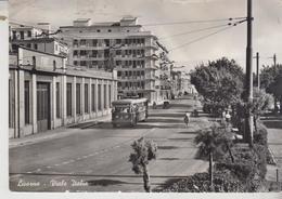 LIVORNO VIALE ITALIA TRAM FILOBUS - Livorno