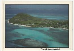 AK The Genadines Petit St. Vincent, Großformat 17,1 X 12 Cm, 1994 Postalisch Gelaufen Nach Düsseldorf, 2 Scans, TG5 - Saint-Vincent-et-les Grenadines