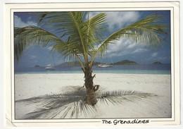 AK The Genadines Palm Island Looking Towards Union, 17,1 X 12 Cm, Postalisch Gelaufen Nach Düsseldorf, 2 Scans, TG5 - Saint-Vincent-et-les Grenadines