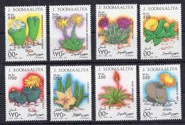 Somalia - Cactus Flora Nature On Postage Stamps Set Of 8 MNH** AJ - Cactusses