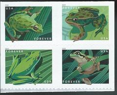 USA. Scott # ? MNH Pane Of 4 From Booklet. Frogs 2019 - Etats-Unis
