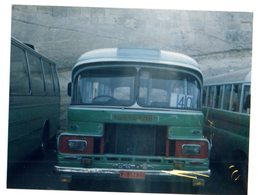 35mm ORIGINAL PHOTO LEYLAND BUS - F026 - Photographs