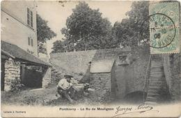 PONTHIERRY / LE RU DE MOULIGNON / ANIMATION - France