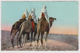 SCENES ET TYPES D'AFRIQUE DU NORD - Touaregs - - éd. Sirecky N° 8172 - Algérie