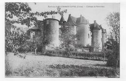 ENVIRONS DE SAINT GERMAIN LAVAL - CHATEAU DE POMMIERS - CPA NON VOYAGEE - Saint Germain Laval