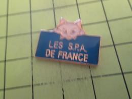313d Pin's Pins / Beau Et Rare : THEME : ANIMAUX / CHAT BLANC LES S.P.A. DE FRANCE - Animaux