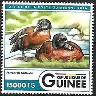 GUINEA - MNH - 2016 -  Hartlaub's Duck    Pteronetta Hartlaubii - Canards