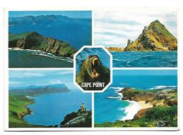 USED POSTCARD SOUTH AFRICA TO BELGIUM - Zuid-Afrika