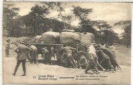 CONGO BELGA ENTERO POSTAL TRANSPORTE CARRO TRACCION HUMANA HUMAN TRACTION - Transport