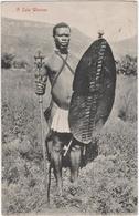 A Zulu Warrior - South Africa