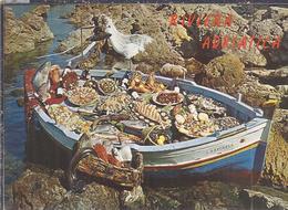 AK-35899  -  Riviera Adratica -Dal Mare Al Platto -Spezialita Marine - Italie