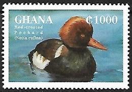 GHANA - MNH - 1995 -    Red-crested Pochard    Netta Rufina - Canards