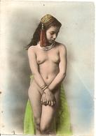 Cpa Nu Type De Femme Afrique Du Nord - Nordafrika, Maghreb