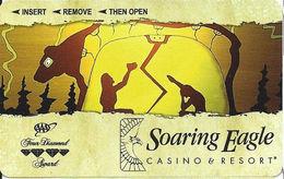 Soaring Eagle Casino - Mt. Pleasant MI - Hotel Room Key Card - Hotel Keycards