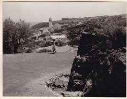 TENERIFE GANBELARIA 1956 Espagne Photo Amateur Format Environ 5,5 Cm X 7,5 Cm - Lugares