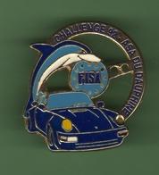 PORSCHE *** CHALLENGE 92 ASA DU DAUPHINE *** 1031 (39) - Porsche