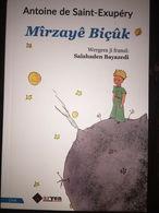 LITTLE PRINCE Antoine De Saint Exupery Mirzaye Biçuk KURDISH LANGUAGE - Livres, BD, Revues