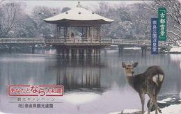 Rare Télécarte Japon / 110-016 - ANIMAL - BICHE Chamois Japonais - DOE Japan Phonecard - 149 - Télécartes