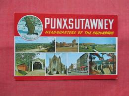 Headquarters Of The Ground Hog  Punxsutawney Pennsylvania   Ref 3495 - United States