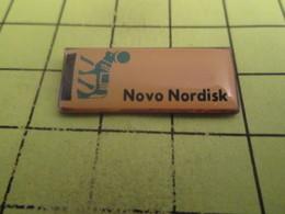 211B Pin's Pins / Beau Et Rare : THEME : MARQUES / NOVO NORDISK RENNE - Marcas Registradas