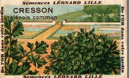 CHROMO BON POINT LEONARD LILLE  SEMENCES CRESSON ALENOIS COMMUN - Chromos