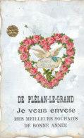 35  // DE SAINT PLELAN LE GRAND, Je Vous Envoie Mes Meilleurs Souhaits De Bonne Année, Ajouti  ** - France