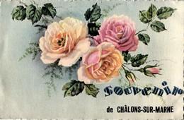 Cpa Fantaisie G.Artaud Gaby  Souvenir De Chalons-Sur-Marne Roses - Fêtes - Voeux