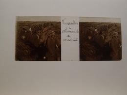 Photo Plaque De Verre Stéréoscopique Guerre 14-18 Poilus Vauxaillon Allemands Se Rendant Aisne - Diapositiva Su Vetro